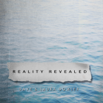 Reality Cover